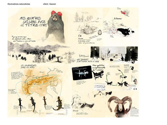 Julien Carlier book_baobab 07