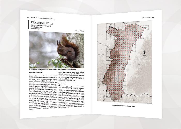 Atlas Mammifères Alsace 5