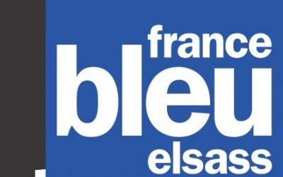 Une interview pour les Mammifères d'Alsace