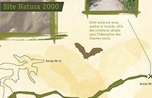 Natura 2000 les chauves-souris