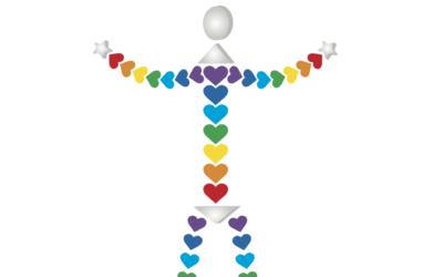 KOALI, un site sur mesure tout en couleurs